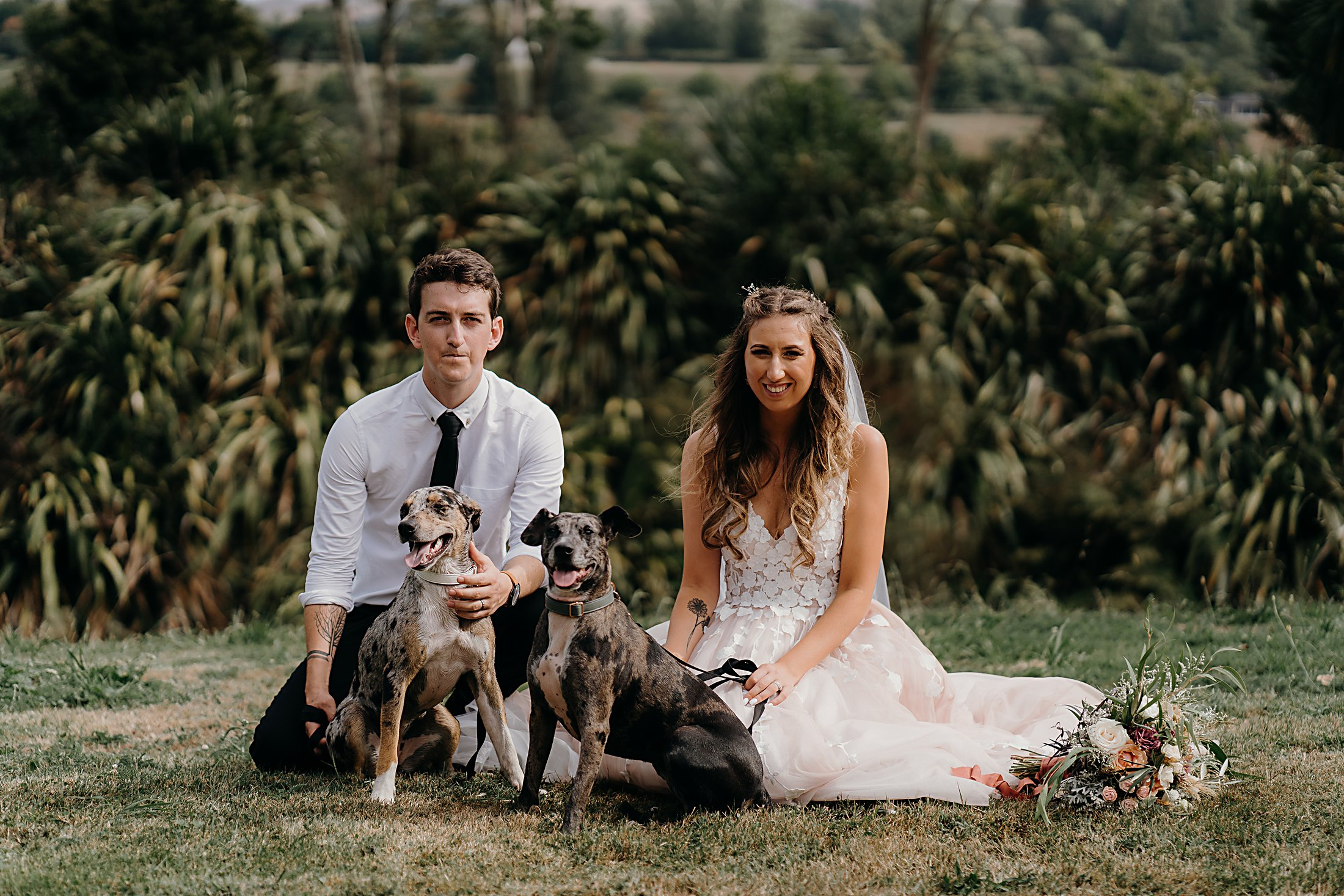 Bride and Groom with their wedding dogs